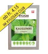Xylit Kaugummi Peppermint 30 Stück (100g = Fr. 13.11)